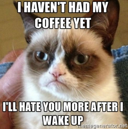meme with closeup of Grumpy Cat and text: I haven't had my coffee yet. I'll hate you more after I wake up