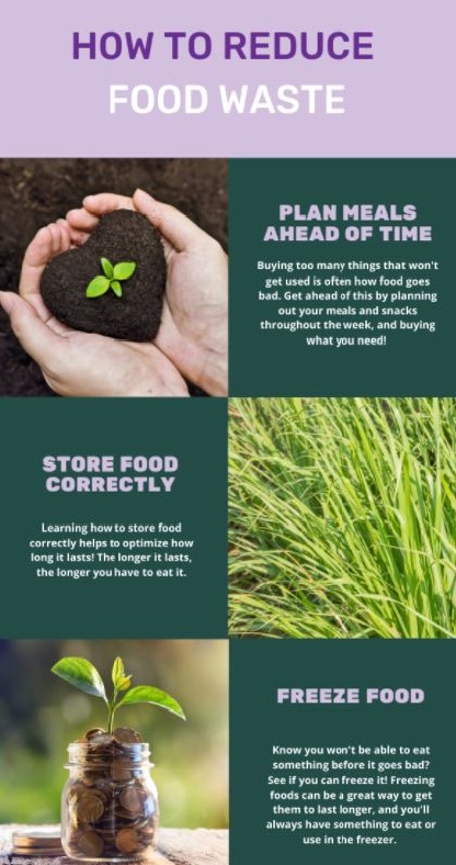 Infographic on reducing food waste: plan ahead, store food correctly, freeze food.